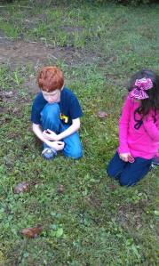 A couple of students wait patiently for the turtles to poke their heads out of their shells.